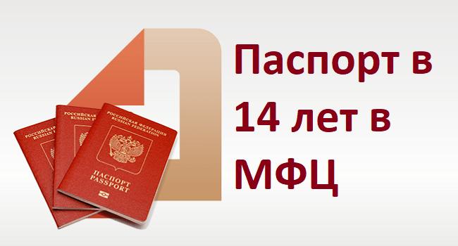 pasport14